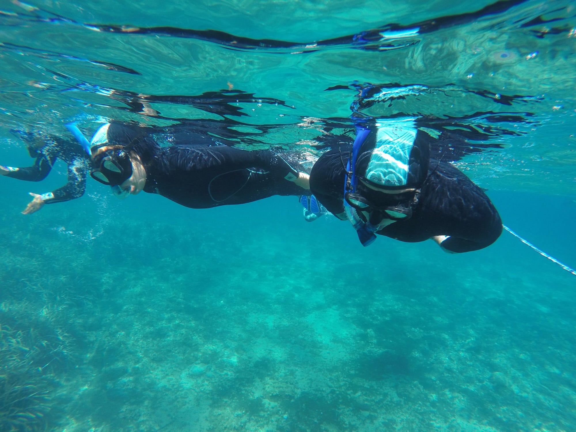 Entdecken Sie den Meeresboden des Calanque von Port d'Alon